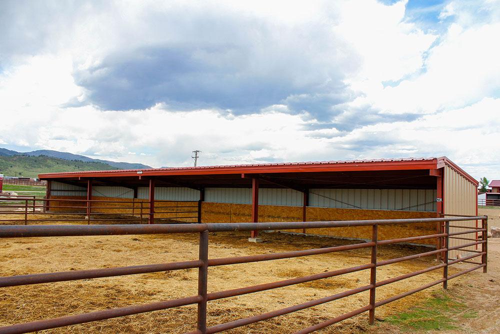 Equine Metal Buildings