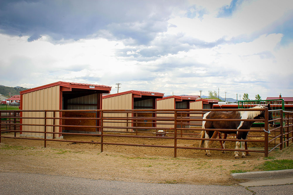 Equine Metal Shed