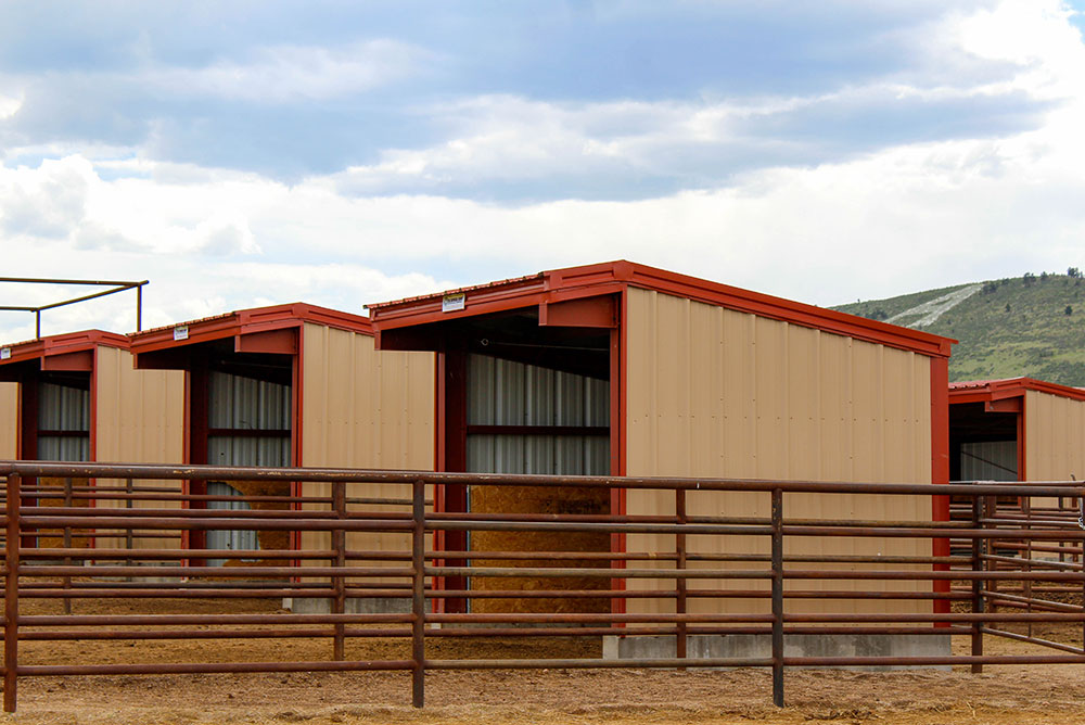 Metal Equine Shelters